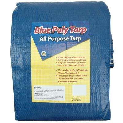 30 ft. x 50 ft. Blue Tarp
