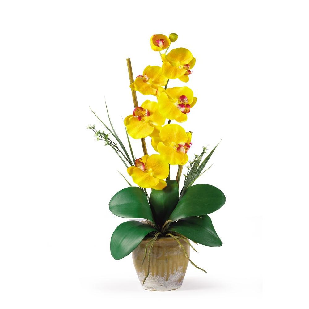 Nearly Natural 21 in. Single Stem Phalaenopsis Silk Orchid Flower Arrangement, Yellows/Golds