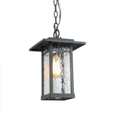Black 1-Light Outdoor Hanging Lantern with Water Glass Shade