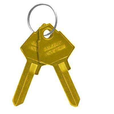 Key Blanks for Aluminum Mailbox Standard Locks (Box of 50)