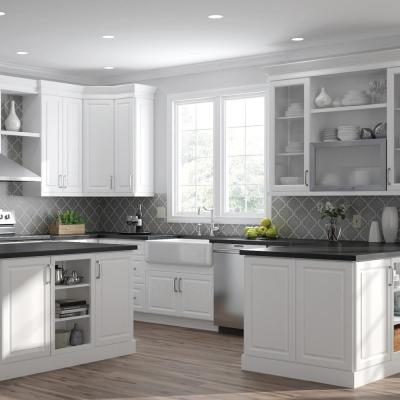 Designer Series Elgin Assembled 24x84x23.75 in. Pantry Kitchen Cabinet in White