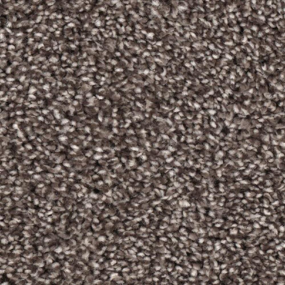 Home Decorators Collection Scout\'s Crossing I - Color Vanguard Texture 12  ft. Carpet