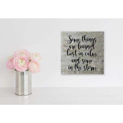 "Reclaimed Steel Metal Wall Art ""SOMETHINGS ARE LEARNED IN THE STORM"" Decorative Sign"