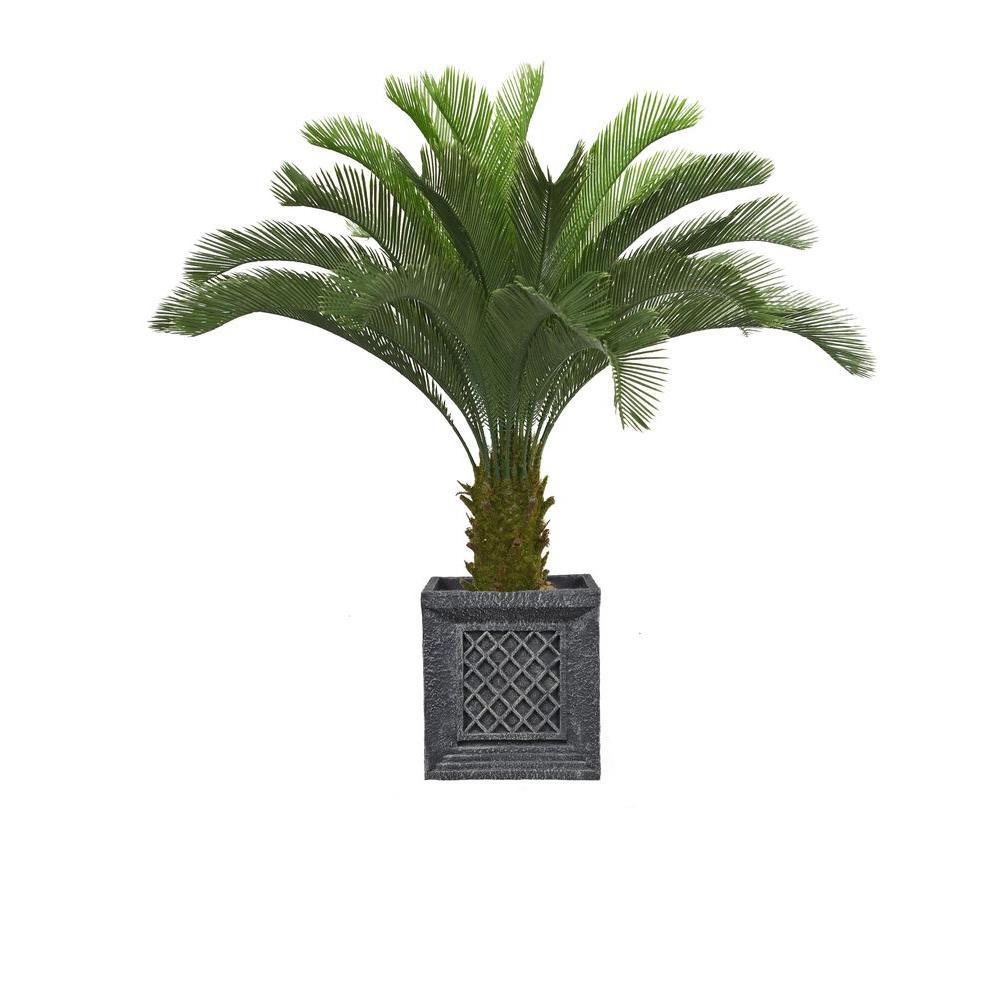 Laura Ashley 54 in. Tall Cycas Palm Tree in Planter, Blacks