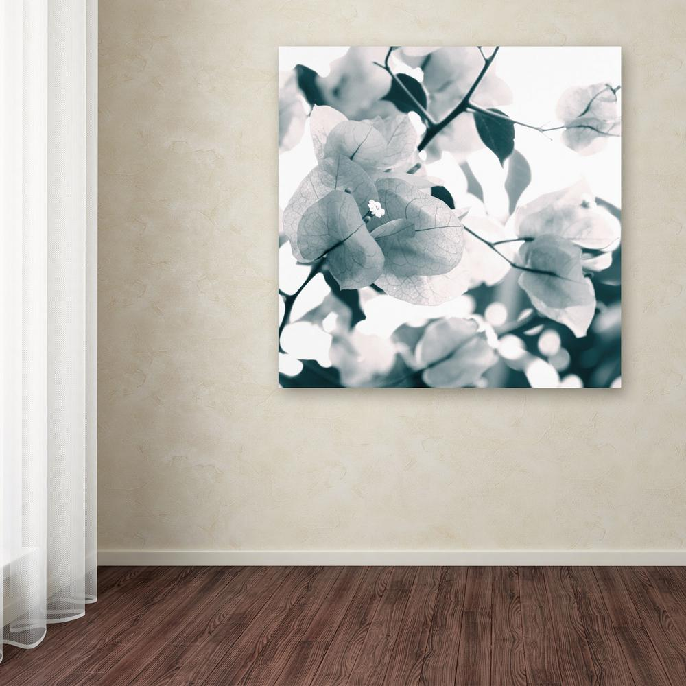 "14 in. x 14 in. ""About a Flower"" by Beata Czyzowska"