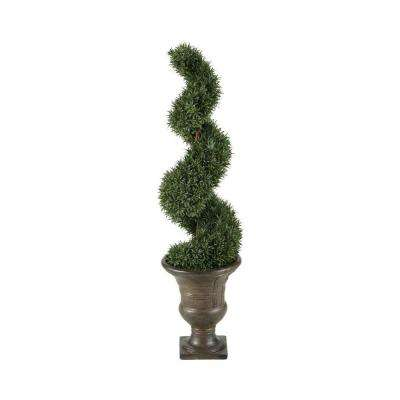 Haverford 5 ft. Spiral Topiary