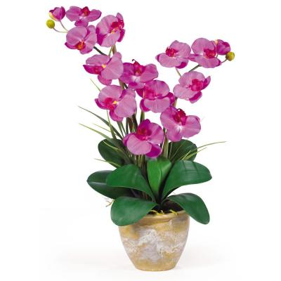 25 in. Double Phalaenopsis Silk Orchid Flower Arrangement in Orchid
