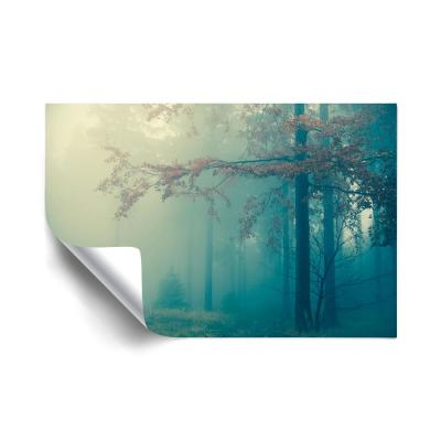 Woods Trees Removable Wall Mural