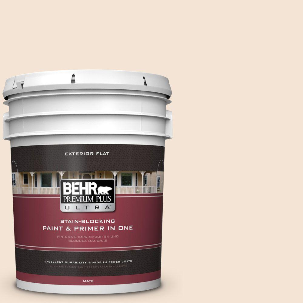 BEHR Premium Plus Ultra 5-gal. #ECC-41-1 Fair Winds Flat Exterior Paint