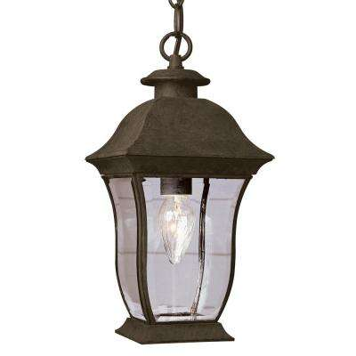 1-Light Outdoor Black Hanging Lantern With Beveled Clear Glass
