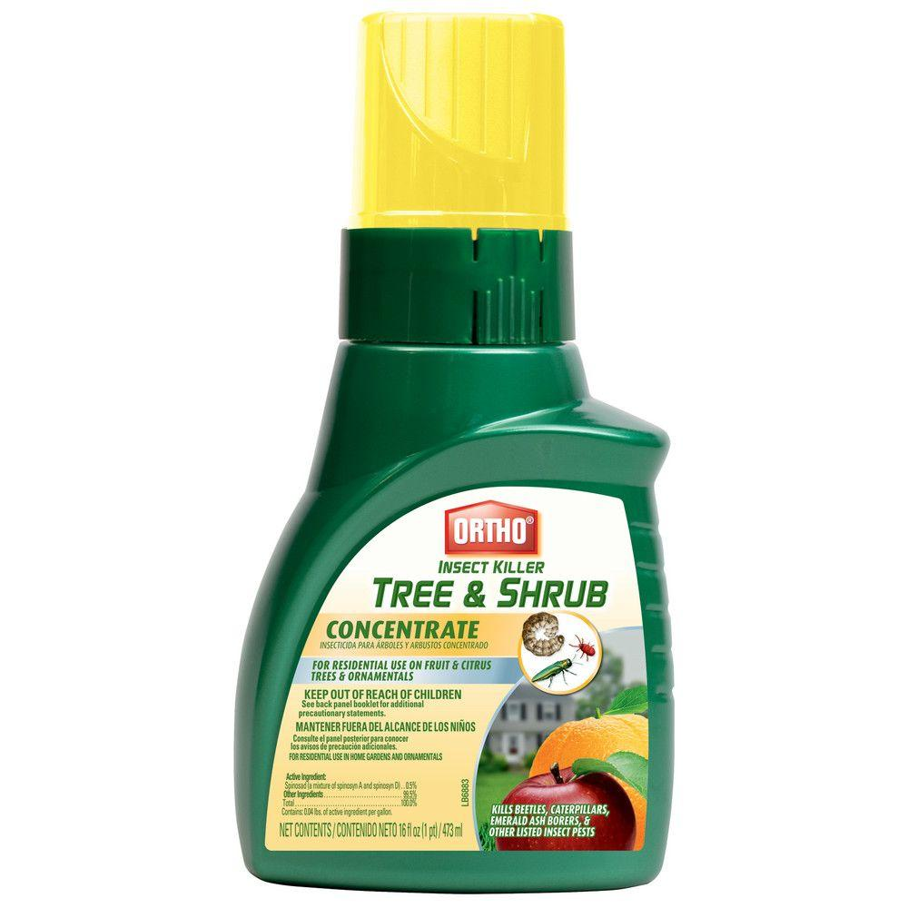 Ortho Tree and Shrub 16 oz. Concentrate Insect Killer