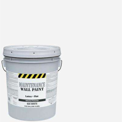 5 gal. Flat Interior and Exterior Paint