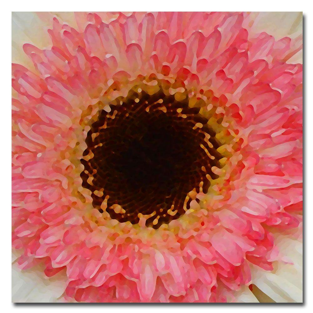 24 in. x 24 in. Pink and Brown Gerber Center Canvas