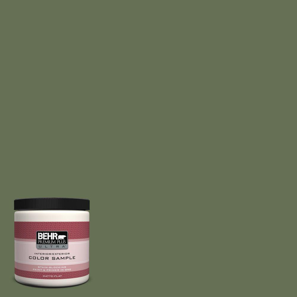 Pmd 46 French Tarragon Matte Interior Exterior Paint And Primer In One Sample