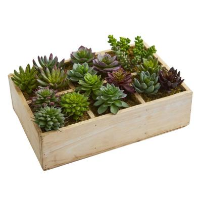 12 in. Indoor Mixed Succulent Garden in Tray Artificial Plant