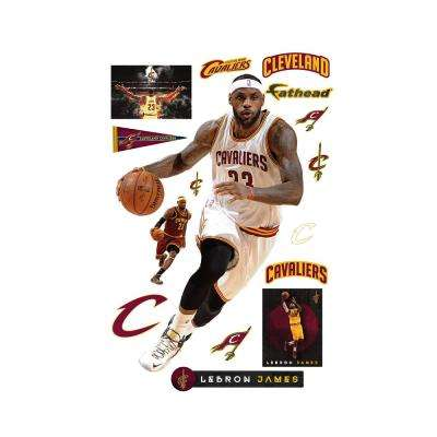 78 in. H x 49 in. W Lebron James - Drive Wall Mural