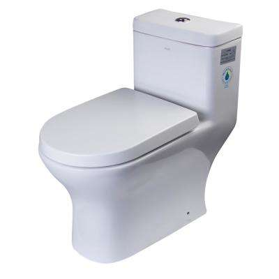1-Piece 0.8/1.6 GPF Dual Flush Elongated Toilet in White