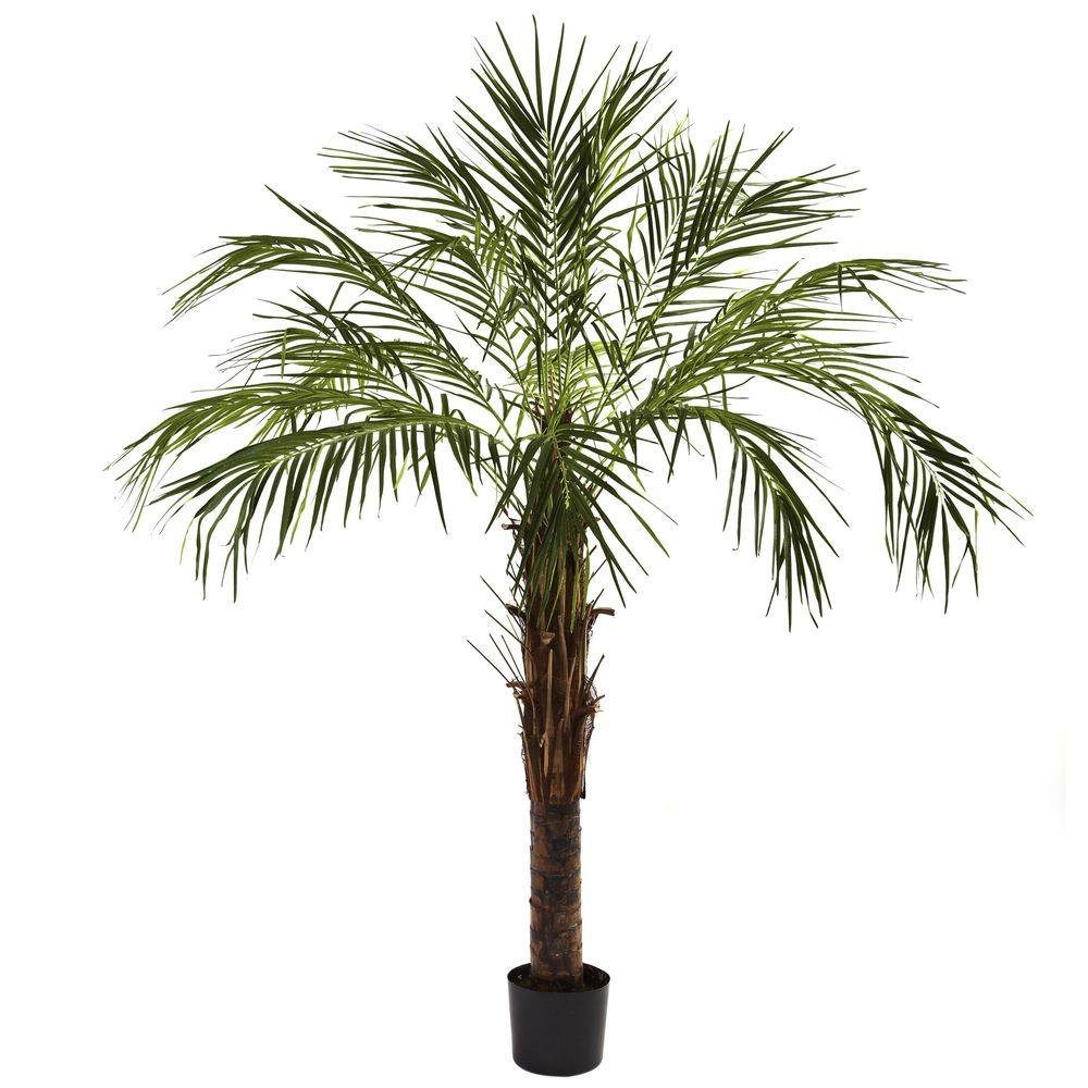 nearly natural 6 ft robellini palm tree5366 the home depot