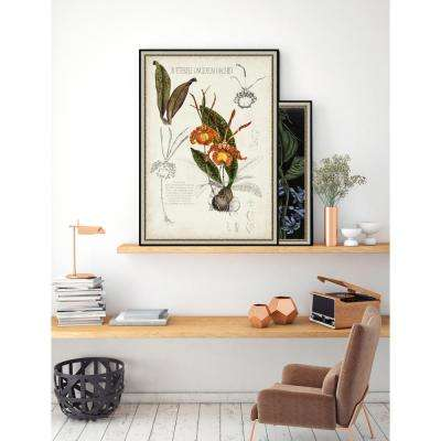 31.75 in. x 21.75 in. 'Orchid Field Notes IV' by Naomi McCavitt Fine Art Paper Print Framed with Glass Wall Art