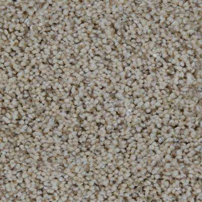 Carpet Sample - Trendy Threads I - Color Lakeview Texture 8 in. x 8 in.
