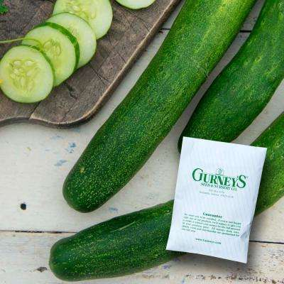 Cucumber Slicing Early Spring Burpless Hybrid (35 Seed Packet)