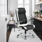 FurnitureR Ergonomic Swivel Black Computer Chair