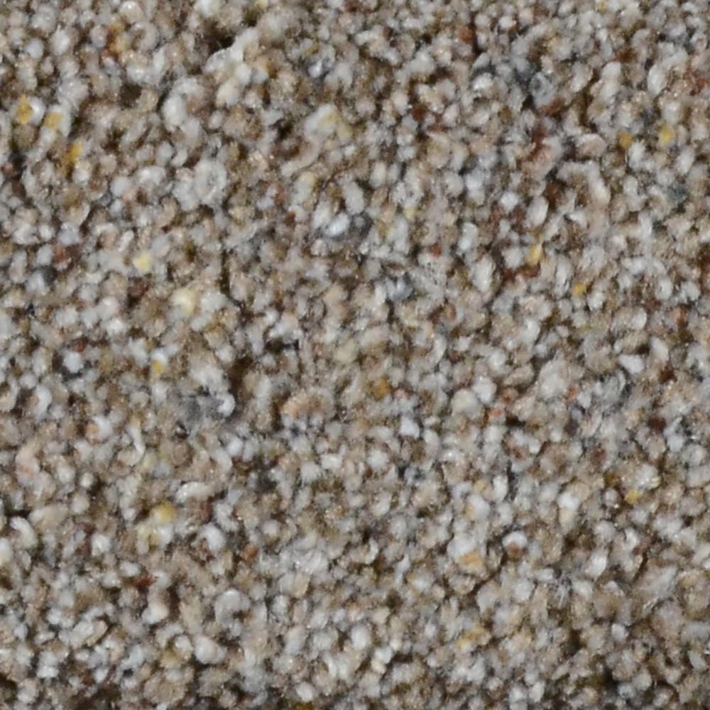 Carpet Sample - Galore II - Color Cody Texture 8 in. x 8 in.