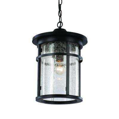 1-Light Black Outdoor Crackled Outdoor Hanging Lantern