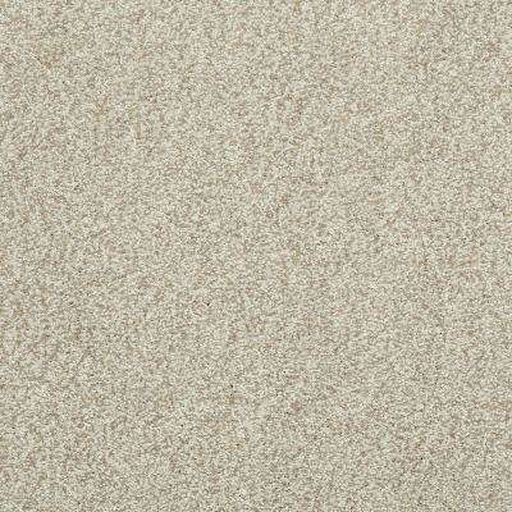 Carpet Sample - Whistler - Color Aurora Texture 8 in. x 8 in.