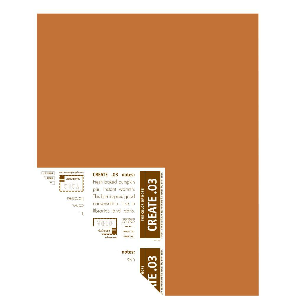 YOLO Colorhouse 12 in. x 16 in. Create .03 Pre-Painted Big Chip Sample