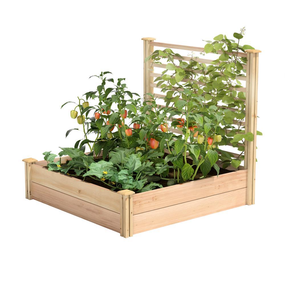4 ft. x 4 ft. X 11 in. Premium Cedar Raised Garden Bed with Trellis