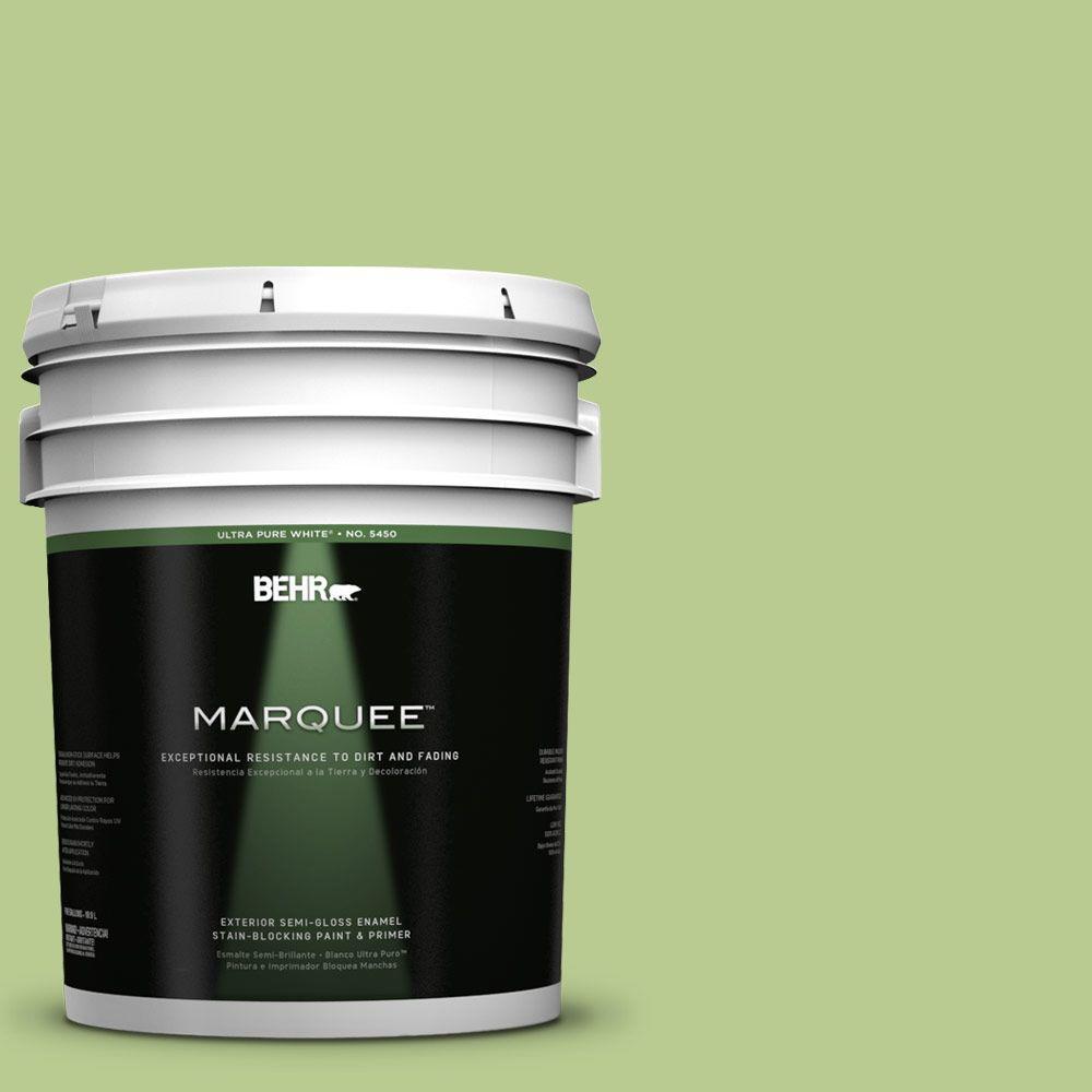 BEHR MARQUEE 5-gal. #420D-4 Marsh Fern Semi-Gloss Enamel Exterior Paint
