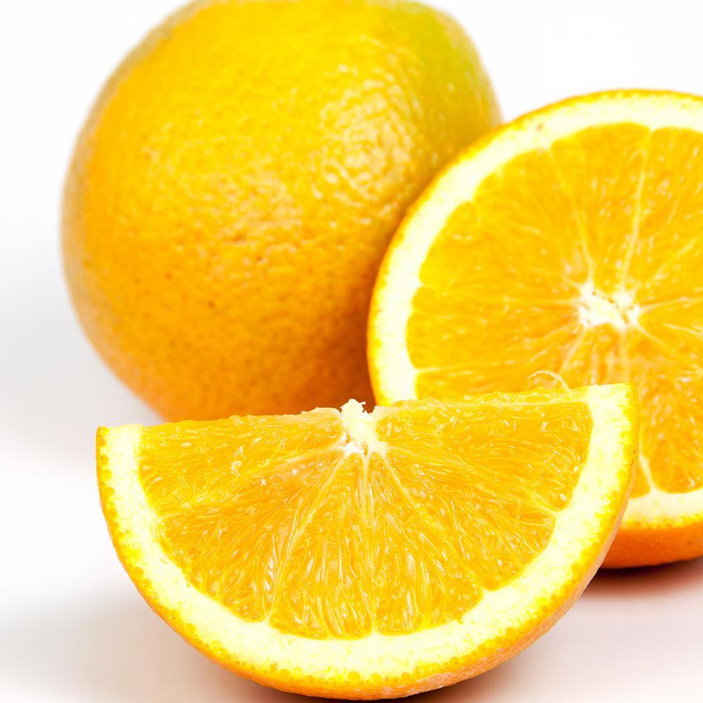 Orange Citrus Tree - Washinton Navel - 1 Plant