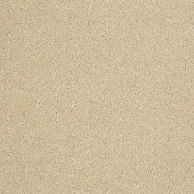 Carpet Sample - Cressbrook I - In Color Spotlight 8 in. x 8 in.