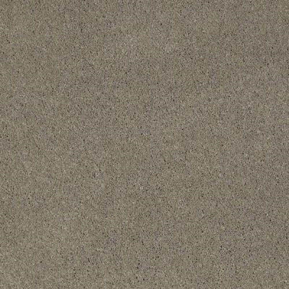 Softspring Carpet Sample Tremendous Ii Color Alamo