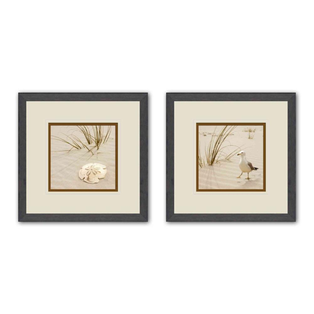 """PTM Images 16 in. x 16 in. """"Sand Shell"""" Double-Matted Framed Wall Art (Set of 2)"""