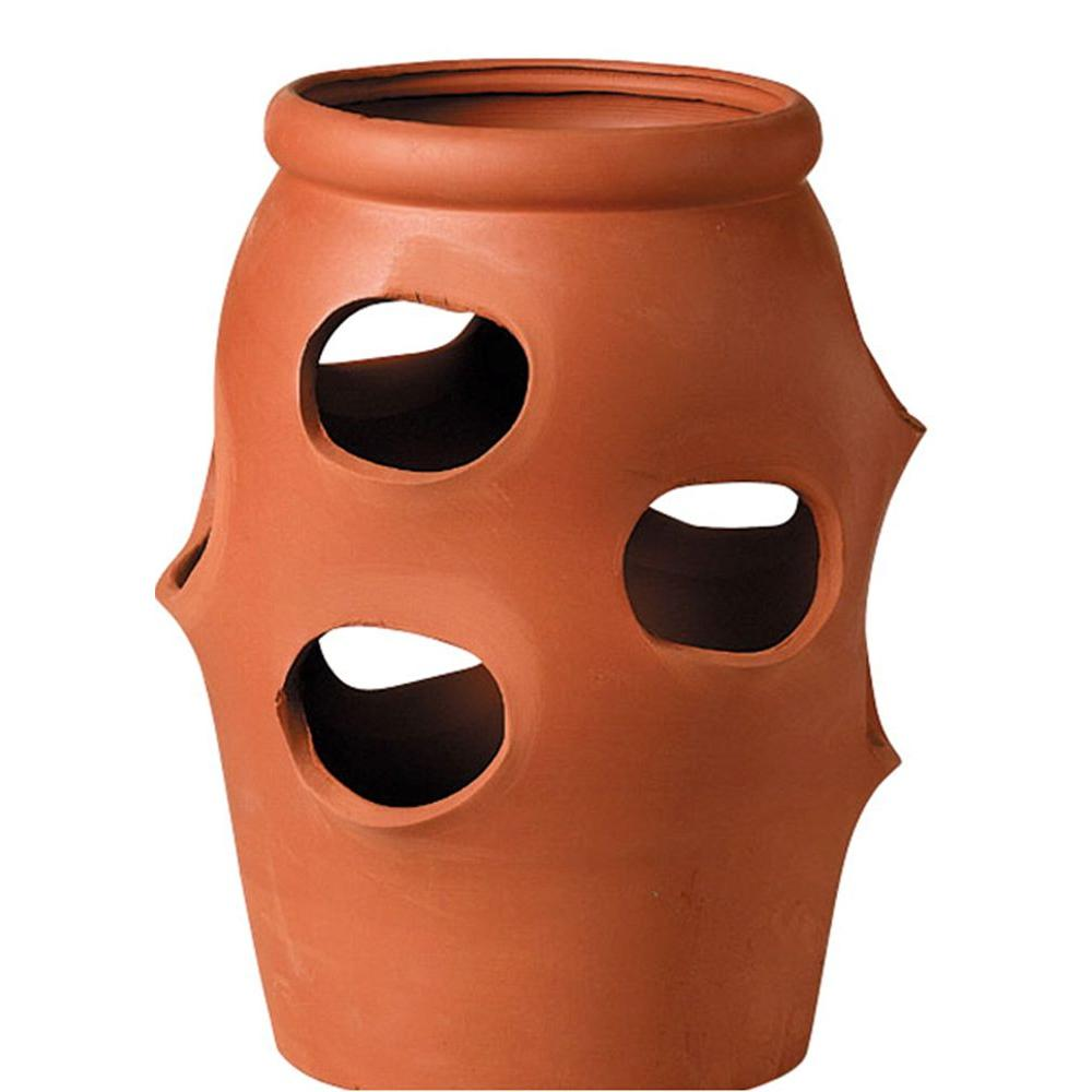 11 in. Strawberry Terracotta Clay Jar