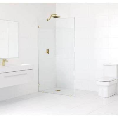 35.5 in. x 78 in. Frameless Fixed Shower Door in Satin Brass without Handle