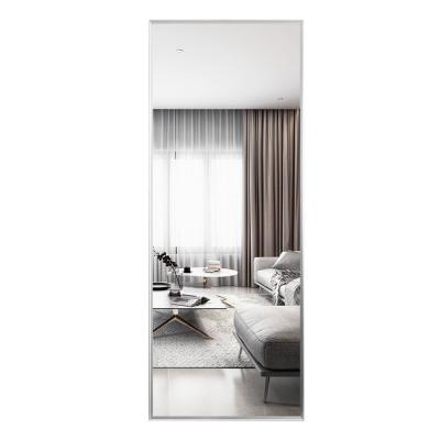 Large Rectangle Silver Hooks Modern Mirror (59 in. H x 20 in. W)