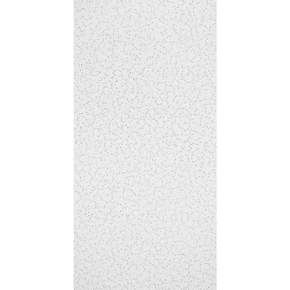 Random Textured 2 ft. x 4 ft. Lay-in Ceiling Tile (80 sq. ft./case)