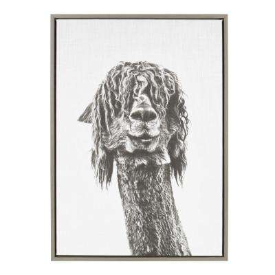 """33 in. x 23 in. """"Brown Alpaca"""" by Tai Prints Framed Canvas Wall Art"""