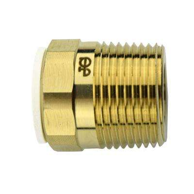 1/2 in. x 3/4 in. Brass Push-to-Connect Male Connector Contractor Pack (10-Pack)