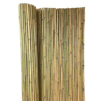 Tonkin 8 ft. H x 4 ft. L Bamboo Fence