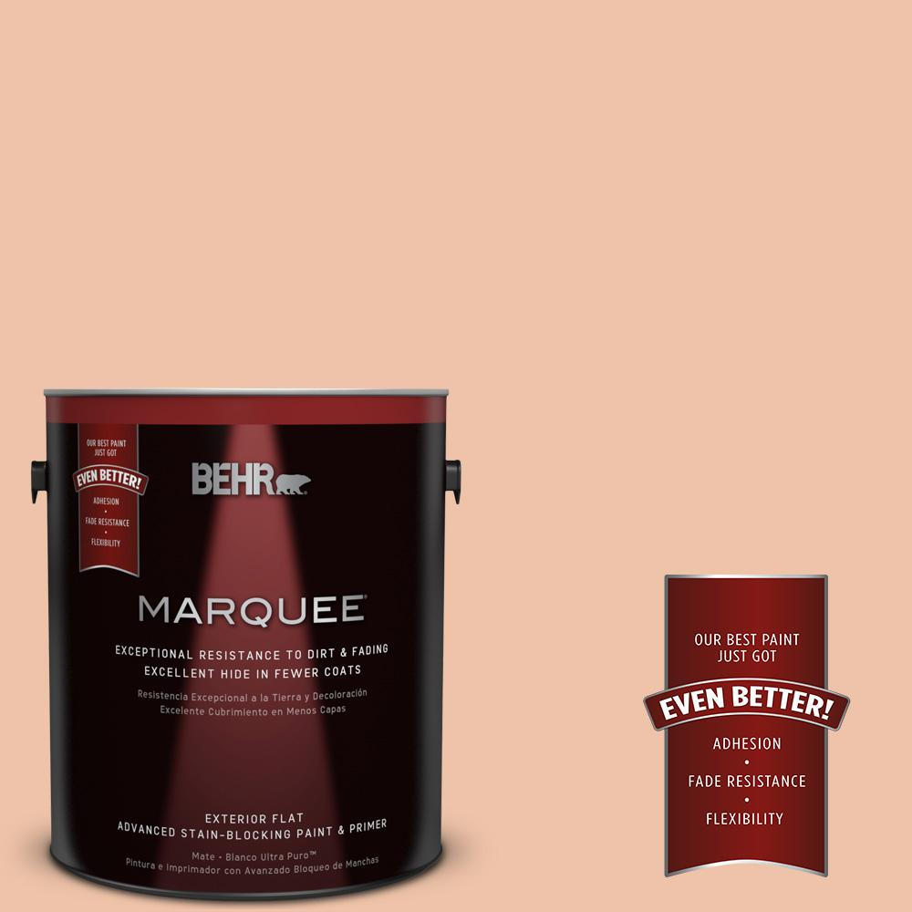 Home Decorators Collection 1-gal. #HDC-FL13-4 Pumpkin Mousse Flat Exterior Paint