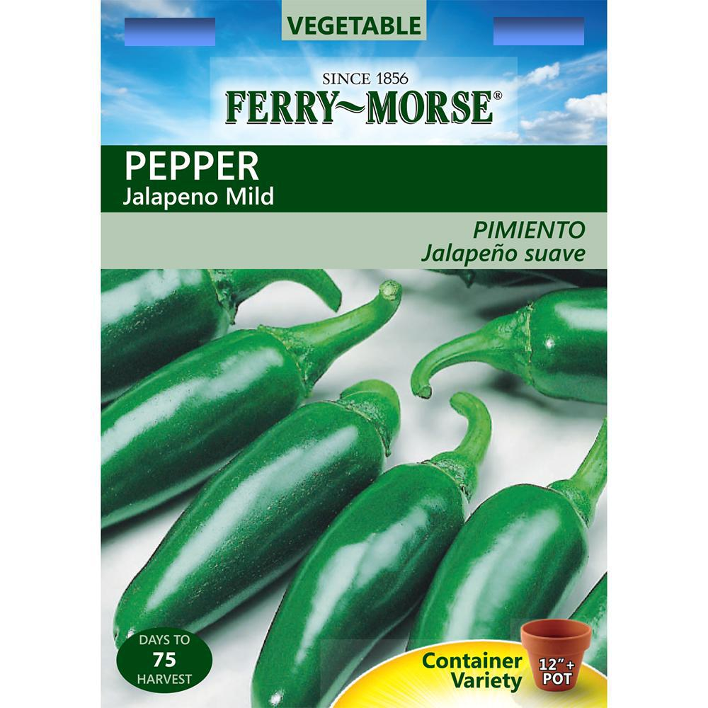 Ferry-Morse Jalapeno Pepper Seed-2050 - The Home Depot on home depot organic gardening, home depot planting, home depot lavender, home depot weeds, home depot peonies, home depot chrysanthemums, home depot hostas, home depot fall, home depot wildlife, home depot sweet potato, home depot tobacco, home depot vegetables, home depot daffodils, home depot coffee, home depot green beans, home depot hot peppers, home depot rosemary, home depot lawn care, home depot drought, home depot recipes,