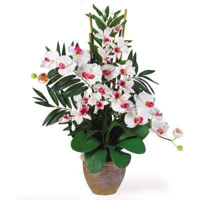 29 in. Double Phalaenopsis and Dendrobium Silk Flower Arrangement in White