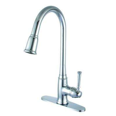 Single-Handle Pull-Down Sprayer Kitchen Faucet in Polished Chrome