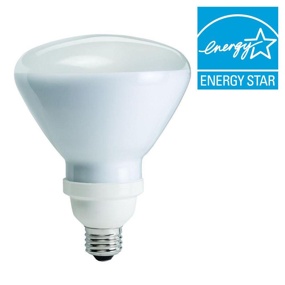 120W Equivalent Soft White (2700K) R40 CFL Flood Light Bulb (E)*