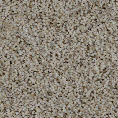 Trendy Threads III - Color Lakeview Texture 12 ft. Carpet