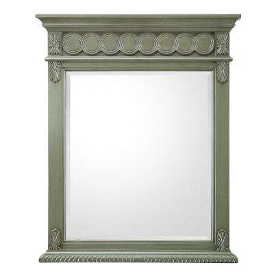 Maribelle 28 in. W x 35 in. H Single Wall Hung Mirror in Loden Green